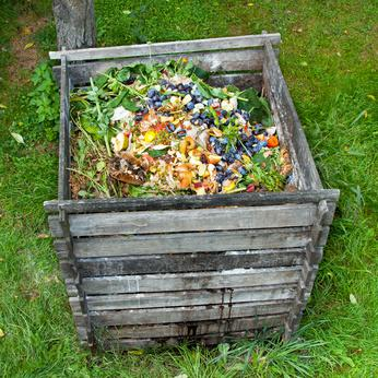 Faire Du Compost En Immeuble Guide Pratique