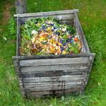 Faire du compost en immeuble : guide pratique