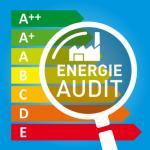 L'audit énergétique d'un immeuble : conseils et fonctionnement