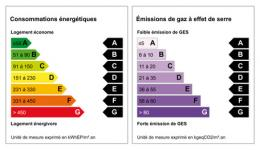 Comment lire un DPE - diagnostic de performance énergétique