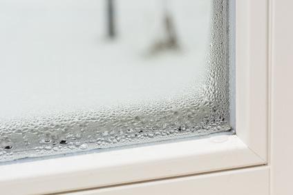 Condensation Les Risques Et Comment Sen Débarrasser