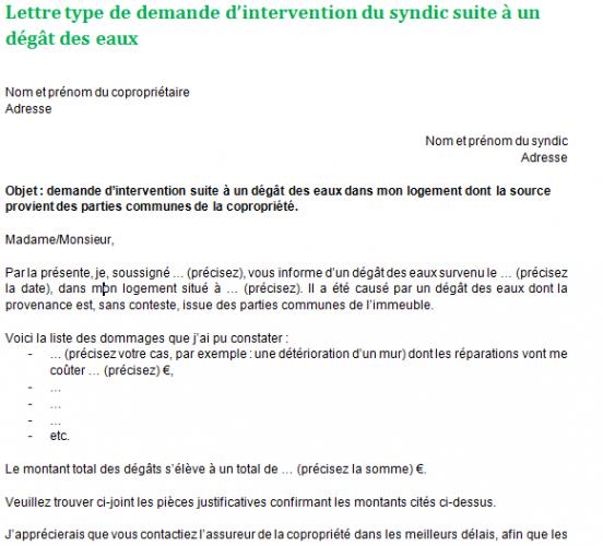 Demande D Intervention Du Syndic Suite à Un Dégât Des Eaux