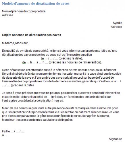 Deratisation Des Caves Modele D Annonces Et Explications
